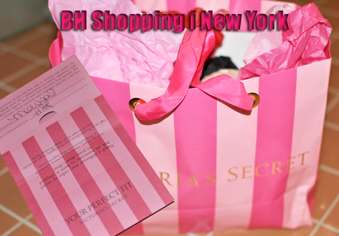 bh-shopping-i-new-york-2