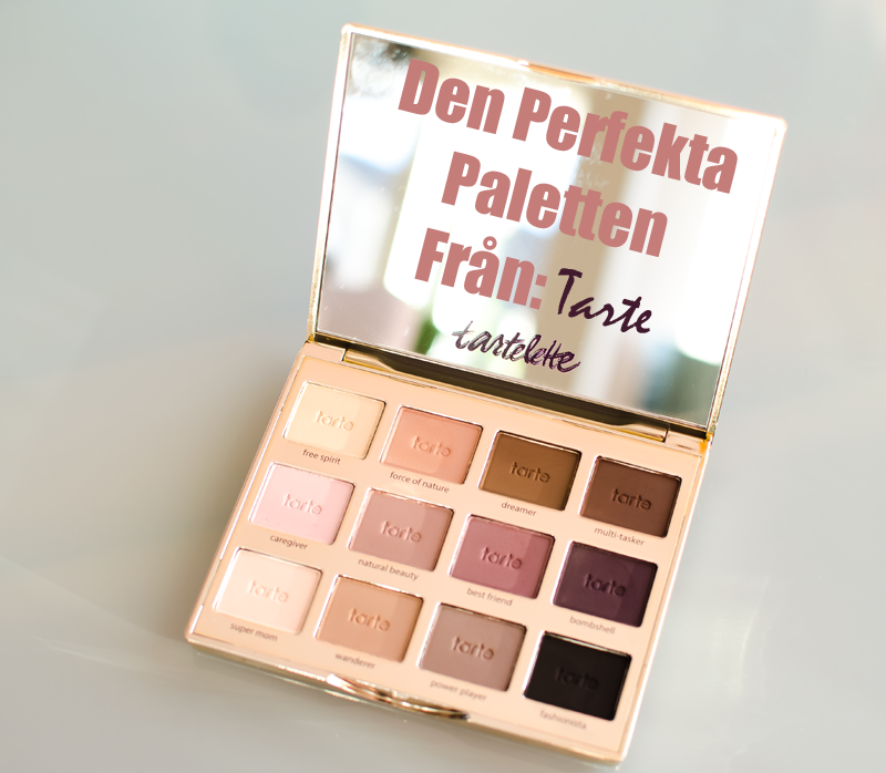 Picture of the new Tarte Partlette Palette